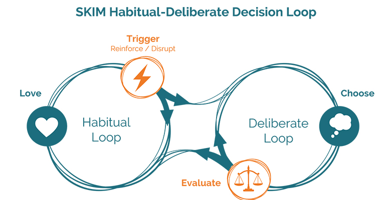 SKIM Habitual Deliberate Decision Loop.jpg