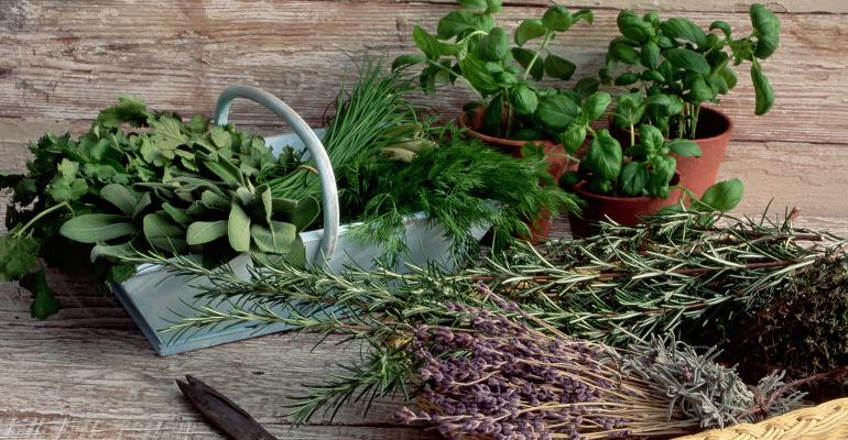 Rosemary meets rising demand for clean label preservation.jpg