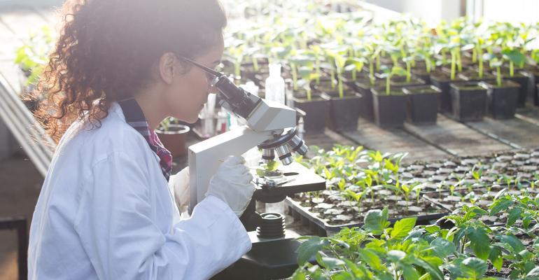 The value of organic certification.jpg