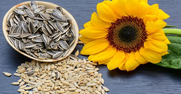 sunflower lecithin.jpg