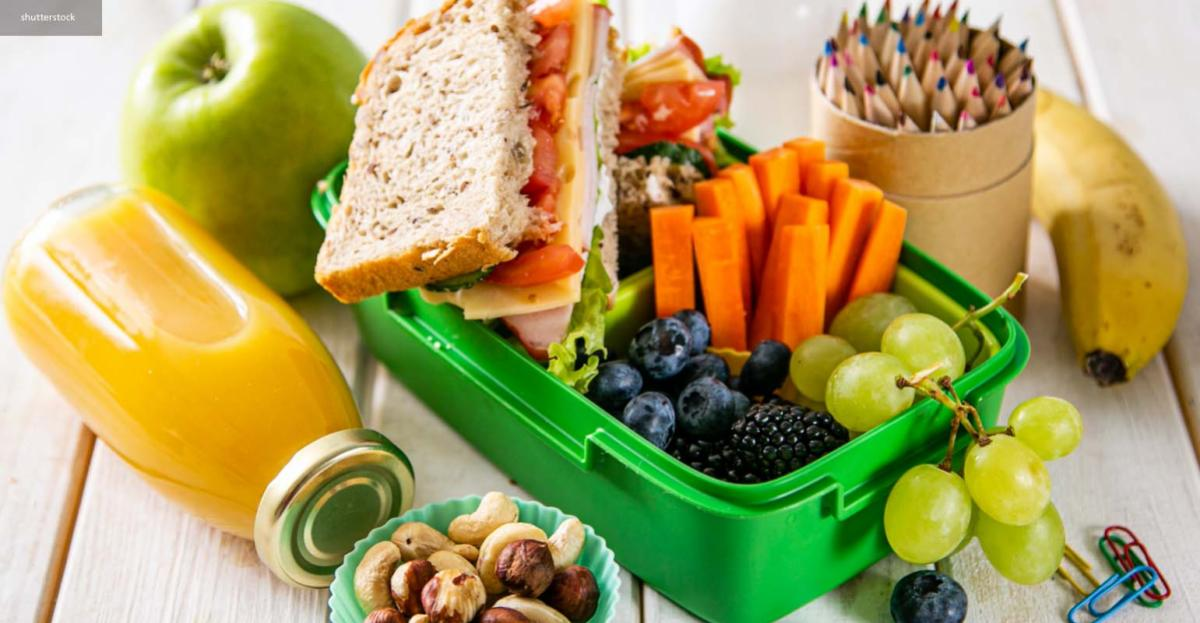 Children and toddler nutrition: Winning strategies to feed the future – digital magazine