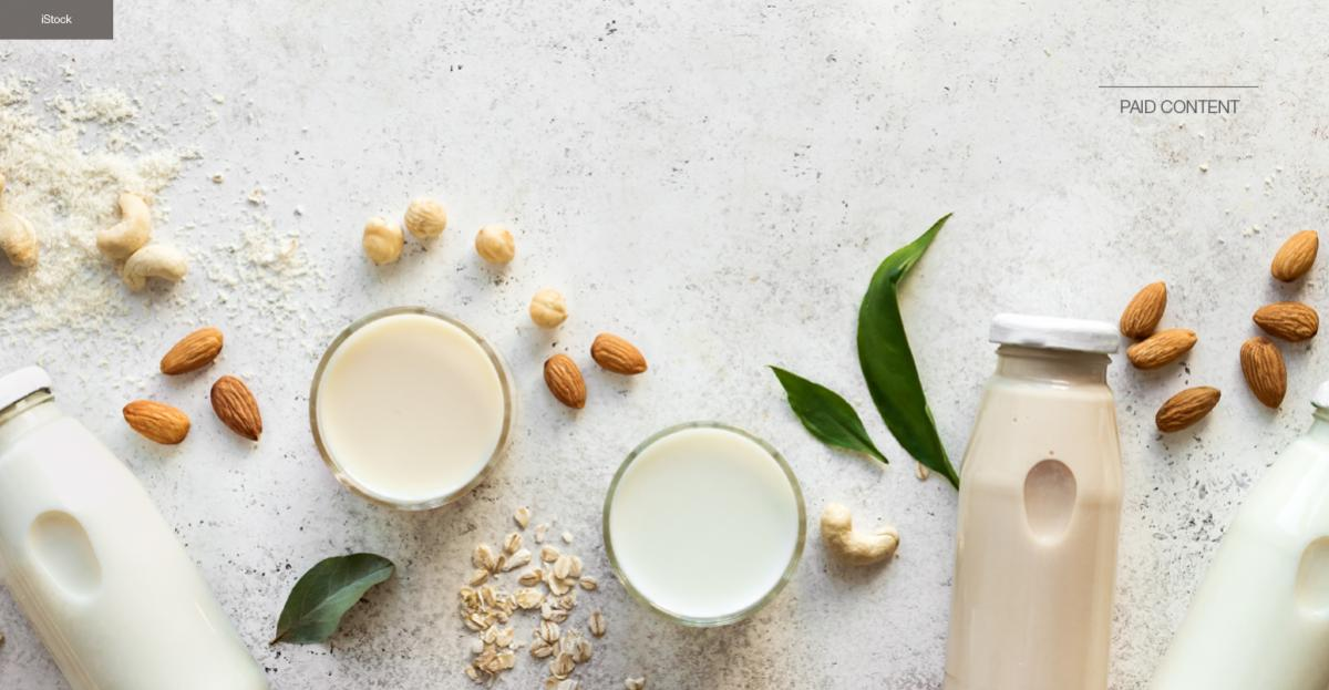 Strong growth and innovations in plant-based dairy alternatives – product development guide