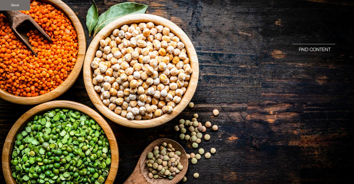 Pulses offer grain reduced sustainable formulation possibilities – product development guide