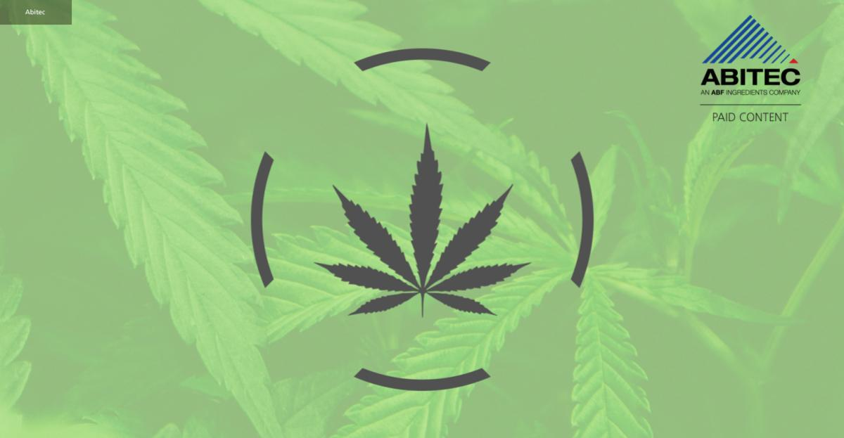 The challenges of formulating with cannabis – infographic