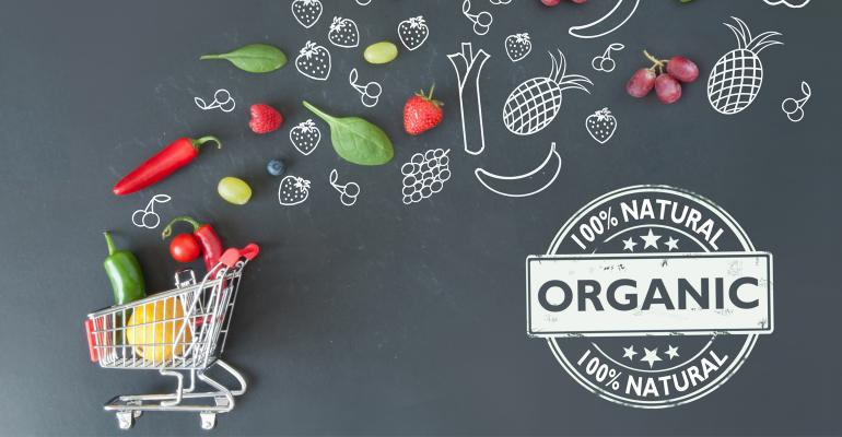 Grocery Cart with Organic Food