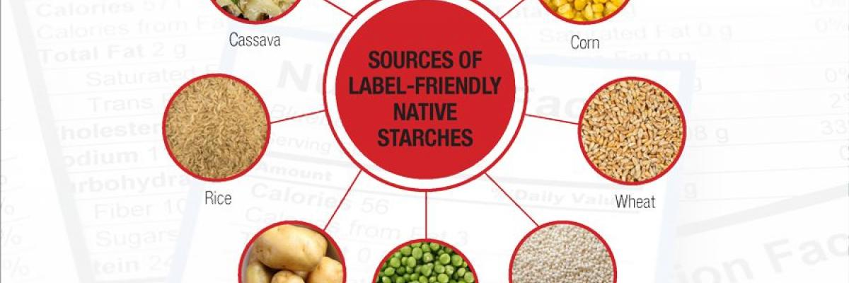 Infographic: Spotlight on Gums & Starches