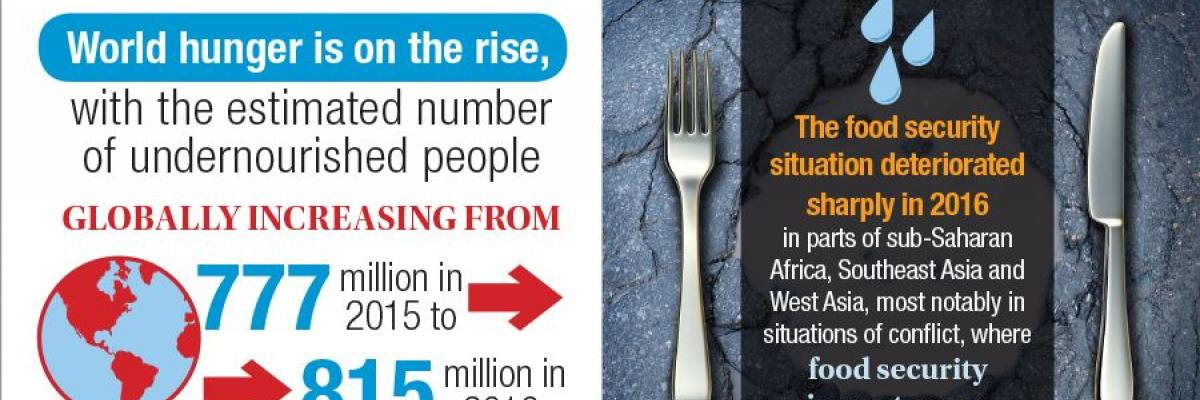 Infographic: The Cost of Food Insecurity