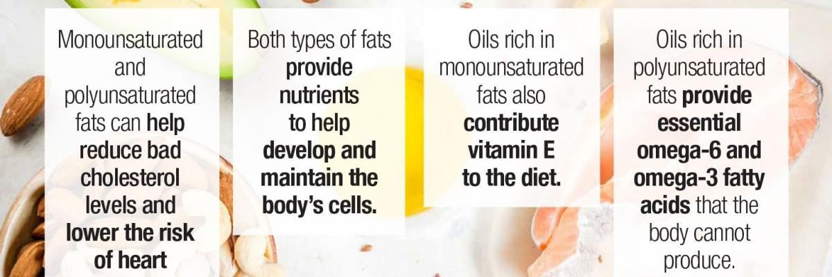 The Facts on Healthy Fats — Infographic