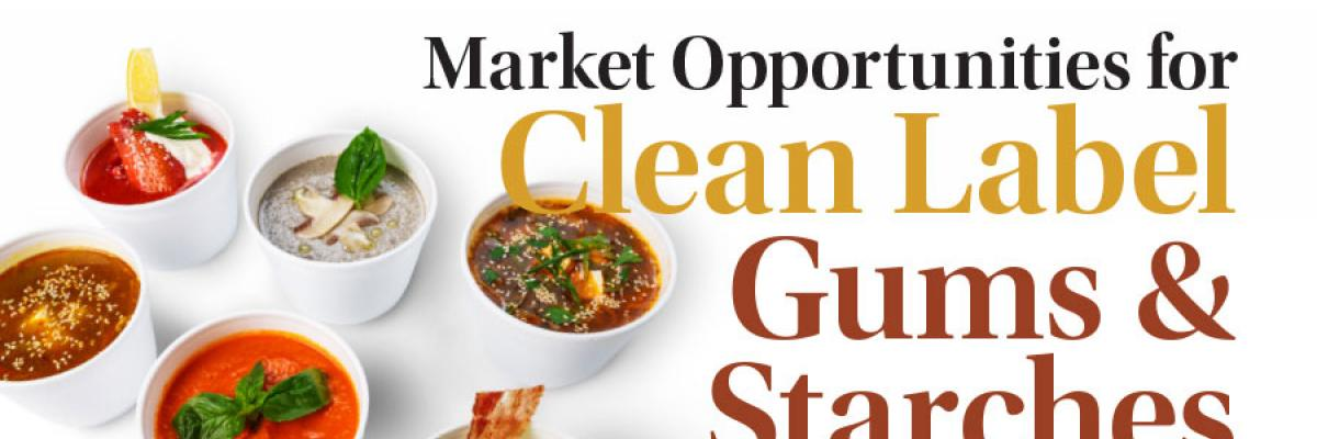 Market Opportunities Clean Label Gums & Starches