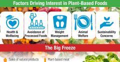 Plant-based frozen food innovation